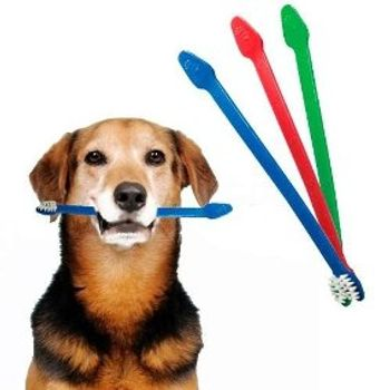 Escova Dental c/ Cabo Duplo Cat Dog