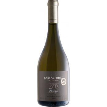 Vinho Casa Valduga Raízes Terroir Sauvignon Blanc 750ml