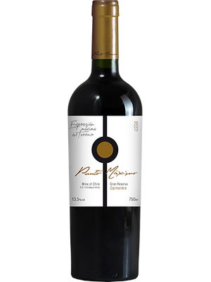 Vinho Punto Maximo Gran Reserva Carménère 750ml